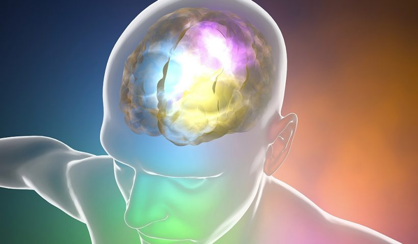 Cerebral angioma
